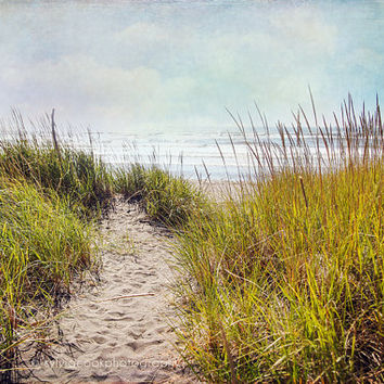 "Beach home decor, ""Ocean walk"", seashore, summer decor, beach photography, coastal wall art, sand dunes"