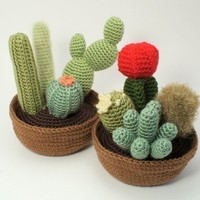 Cactus Collections, eight realistic PDF CROCHET PATTERNS