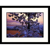 Great American Picture Lake Tahoe Sunset and Snow, California Framed Photograph - IS523490-L-BK