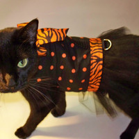CoolCats Black and Orange Polka Dot  Tutu Dress for Cats Halloween Costume