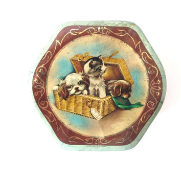 Vintage Puppy Cat Dog Tin Can, Metal Cookies Box, Green, Turquoise