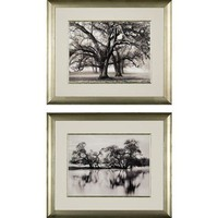 Phoenix Galleries Two Hearted Oak Framed Prints - Two Hearted Oak Series