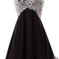 Fiesta Formals Short Chiffon Metallic Silver Embroidery Dress