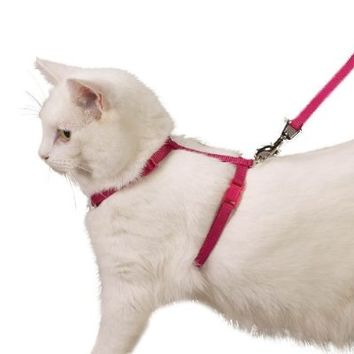 Nylon Cat Lead