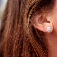 Snail Shell Stud Earrings