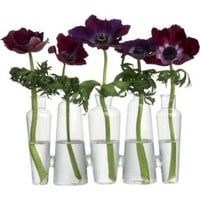 CB2 - 5-bottle bud vase