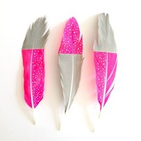 Hand Painted Feather Decorations