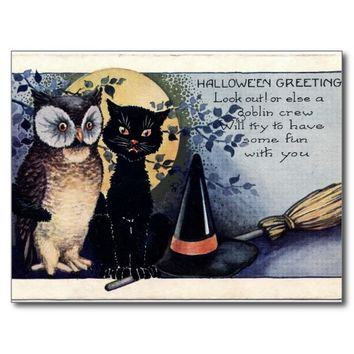 Owl Black Cat Witch Hat Halloween Postcard