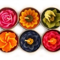 Tea Lights - Tropical Flower Candles - Assorted Colors