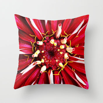 Red Zinnia Throw Pillow by Legends of Darkness Photography