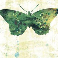 Green Butterfly Art Print - 5 X 7 -.. on Luulla