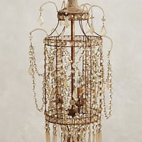 Crystal Palace Chandelier by Anthropologie Clear One Size Lighting