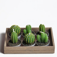 Cactus Tealight Candles - $14.00 : ThreadSence.com, Your Spot For Indie Clothing & Indie Urban Culture