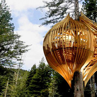 New Zealand?s Whimsical Yellow Treehouse Restaurant | Inhabitat - Green Design Will Save the World