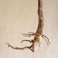 Modern Root Pendant Lamp by MarieMortensen on Etsy