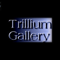 Trillium Gallery Web Photographers