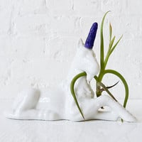 Magic Unicorn Air Plant Garden - Purple Power Glitter uni Horn