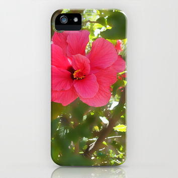 Pink Hibiscus Two iPhone & iPod Case by Olluga