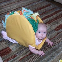 Taco Belle » Funny, Bizarre, Amazing Pictures & Videos