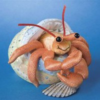 Henry the Plush Hermit Crab with Shell by Douglas