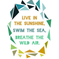 Emerson 8x10 Print - LIve in the sunshine, swim the sea, drink the wild air