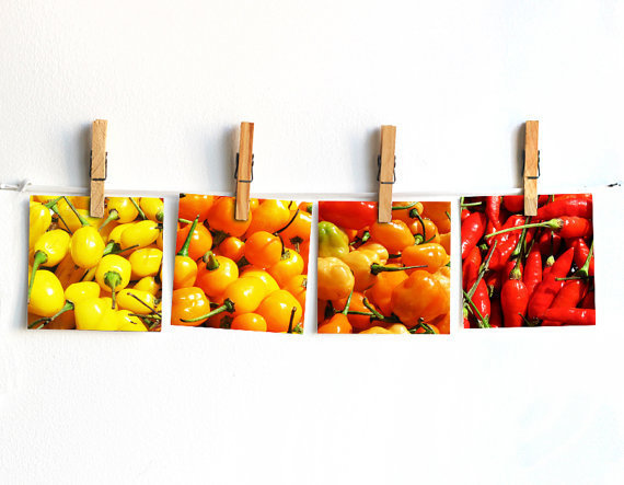 Kitchen Photography Set Of 4 10x10cm 4x4 From Peraboom On