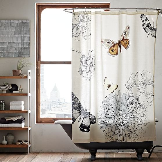 Butterfly Shower Curtain - West Elm