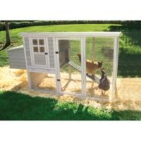 Precision Pet Products Hen House Chicken Coop, 2-4 Chickens