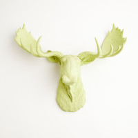 The Nico - Mint Green Resin Moose Head- Moose Resin Mint Faux Taxidermy- Chic &amp; Trendy