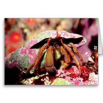 Pink Crab Underwater Artistic Card