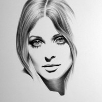 Sharon Tate Minimalism Pencil Drawing Fine Art by IleanaHunter