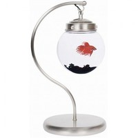 Hanging Fish Bowl, Unique Fish Bowl - Opulentitems.com