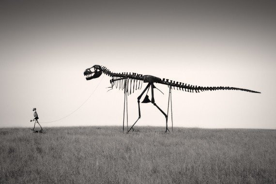 Man&#x27;s Best Friend - Dinosaur Skeleton Photo - 6 x 9 Fine Art Archival Photograph