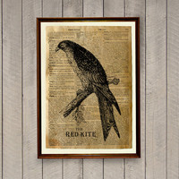 Red kite print Bird poster Dictionary page Animal decor