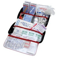 AAA 121-Piece Road Trip First Aid Kit: Automotive