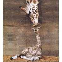 Giraffe - First Kiss College Dorm Room Poster - cute animal themed dorm wall poster shows giraffe and baby giraffe kissing