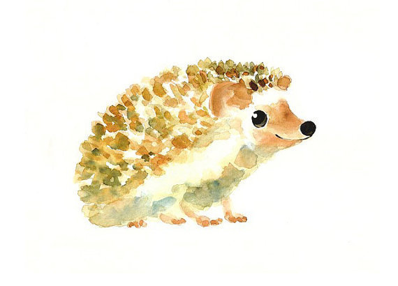 HEDGEHOG by DIMDImini  ACEO print