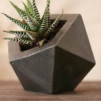 Concrete Geodesic Planter Dark Grey