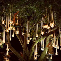 Favorite Places and Spaces / fairytale candle tree