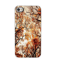 Iphone Case- Harvest Trees, Iphone 4 Case, Orange, Auburn, Halloween , Spooky, Tree Photograph, Tree Iphone Case, Back To School