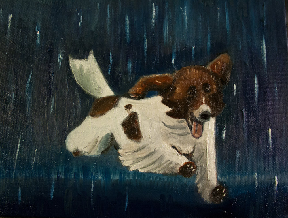 Happy Puppy Dog In Thunderstorm, Su.. on Luulla