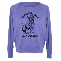 Womens Dinosaurs Are Dinomite Tri-Blend Raglan Pullover - American Apparel - S M and L (8 Color Options)