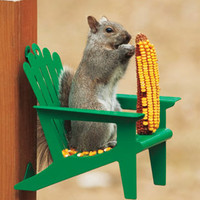 Adirondack Chair Squirrel Feeder | DrsFosterSmith.com