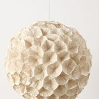 Rhododendron Chandelier-Anthropologie.com