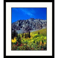 Great American Picture Fall Colors and Silver Mountain, Colorado Framed Photograph - John Coletti -