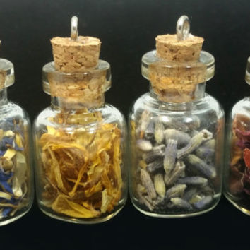 Set of 4 Organic Herb Filled Apothecary Jar / Vial Pendants