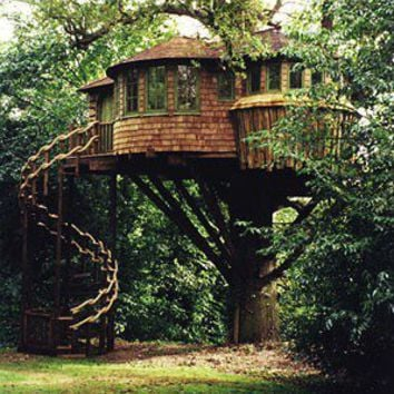 Beautiful Tree House