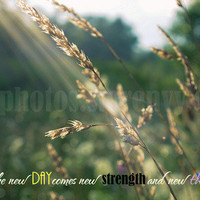 Monique Caraballo Photography | New Day | Online Store Powered by Storenvy