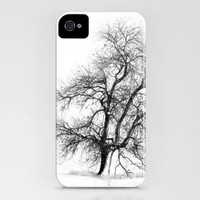 Winter White iPhone Case by John Dunbar | Society6