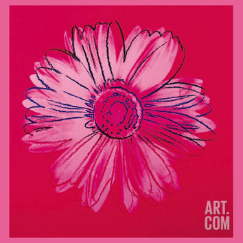Daisy, c.1982 (Crimson and Pink) Art Print by Andy Warhol at Art.com